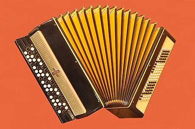 Excellent  Tula  Folk Button ACCORDION BAYAN  MOLODECHNO  100 bass Super sound