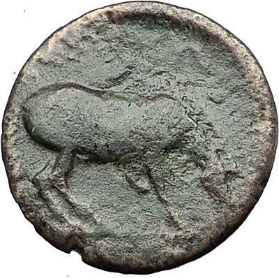 LARISSA Thessaly Genuine 360BC Authentic Ancient Greek Coin NYMPH & HORSE i62121