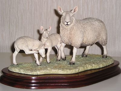 "Border Fine Arts: ""NORTH COUNTRY CHEVIOT EWE & SCOTCH HALFRED LAMBS"""