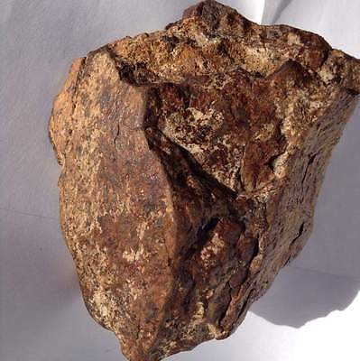 Officially classified meteorite NWA11130 meteorite 1100g /2.425Lbs outer space