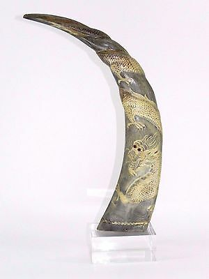 """Long Horn Bull Cow Artwork Design Steer Polished Dragon Sculpture Taxidermy 17"""""""