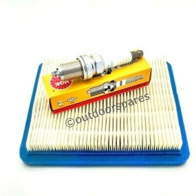 140cc //RM55 //RM65 Engines Quality Replacement Mountfield Air Filter for RM45