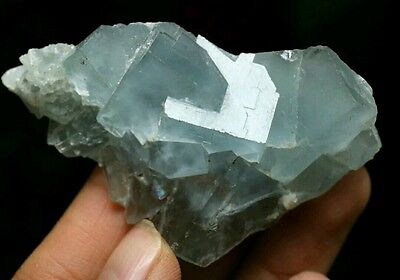 51g Beautiful Natural Blue Cubic Fluorite Crystal Healing specimen