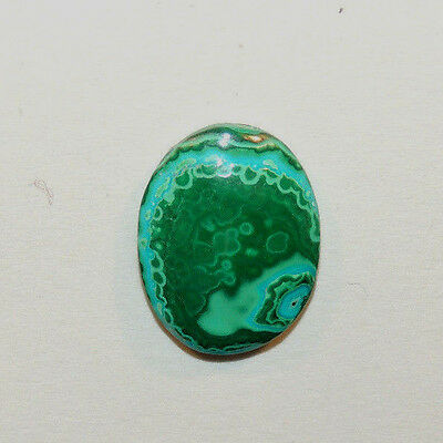 Malachite and Chrysocolla Cabochon 19.5x15mm with 4.5mm dome from Africa (12469)