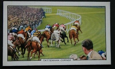 Epsom Derby    Flat Racing  Horse Racing  Vintage Illustrated Card ## VGC