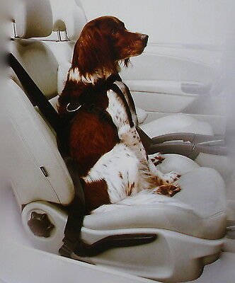 Quality Large Dog Seat Belt: Dogs 20-40kg Safety Harness Restraint Lead Car Van