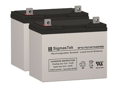 Fortress Scientific 655FS GP24 Replacement Batteries by SigmasTek (Set of 2)