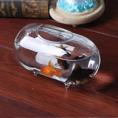 18cm Mini Aquarium Fish Tank en Verre Ovale Poisson Ornement Maison Bureau Décor