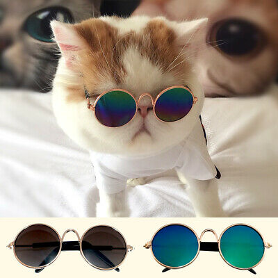 Cute Pet Cat Glasses UV Sunglasses Protection Eye Wear Funny Kitty Kitten Toys