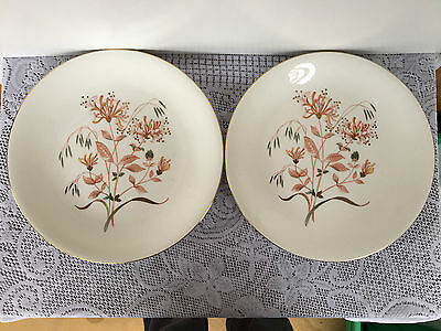 Set of 2 - Wedgwood Honeysuckle  W4217 10 inch Dinner Plates (781)