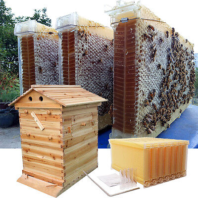 7 Tubes Honey Auto Outflow Hive Beehive Frames + Beekeeping Super Brood Box