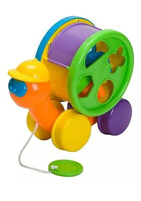 Toby the Turtle Shape Sorter pull along Baby Toddler Childrens sorting Toy