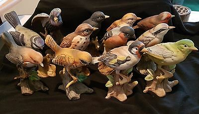 ornament bird figures x 12 assorted species