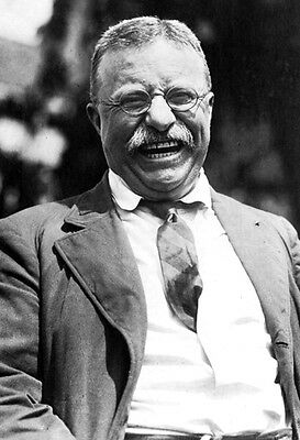 THEODORE ROOSEVELT GLOSSY POSTER PICTURE PHOTO  president teddy bull moose 2165