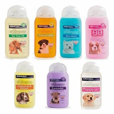Ancol Fragrance Dog Shampoo and Conditioner Assorted Fragrances 200 ml