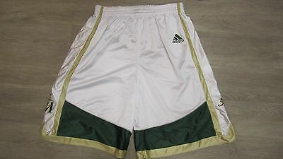 Game Worn/Used LeBron James St. Vincent/St. Marys shorts
