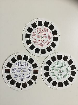 Viewmaster Reels x3 What's Inside? Skeletal Structures