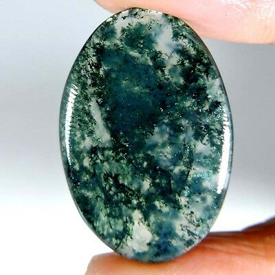 16.80cts NATURAL WONDERFUL GREEN SEAWEED MOSS AGATE OVAL CABOCHON GEMSTONE