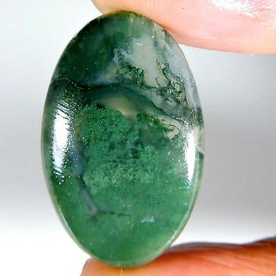 28.35cts NATURAL DESIGNER GREEN SEAWEED MOSS AGATE GEMSTONE OVAL CABOCHON