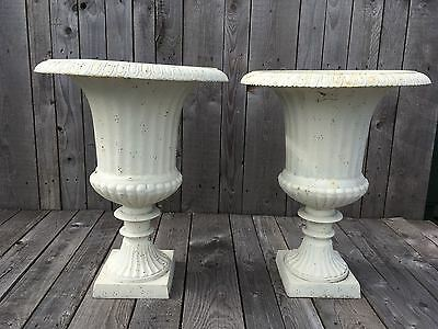 Cast iron Urns A Pair of off White Egg and Dart Cast Iron Urns Fluted urns
