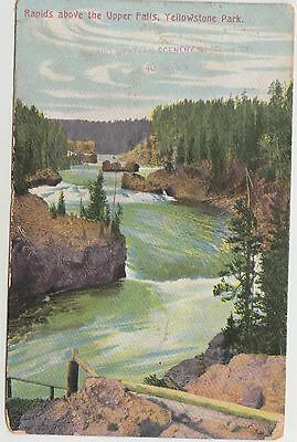 Rapids above upper Fall Yellowstone Park1909 postcard