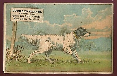 Lot 49: 1890's Cochato Kennel - Holbrook, Mass Dog Training Trade Card
