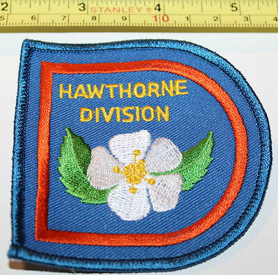 Girl Guides Hawthorne Division BC Canada Dogwood Flower Badge Label Patch