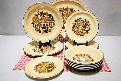 LOT: of 11 Poole Pottery THISTLEWOOD platter, plates, bowls. Oven to Table