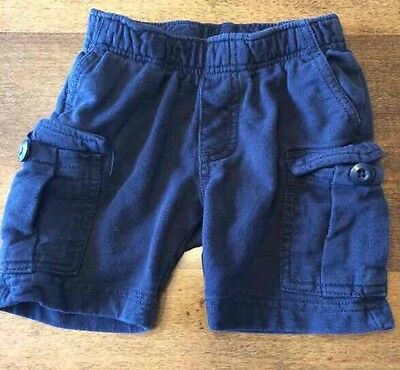 Tea Collection Boys Shorts Size 12-18 Months