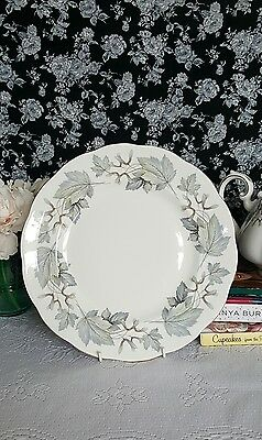 Royal Albert silver maple dinner plates X6 1st quality!