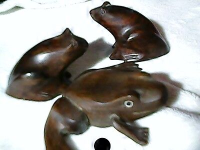 carved wood frogs from argentina