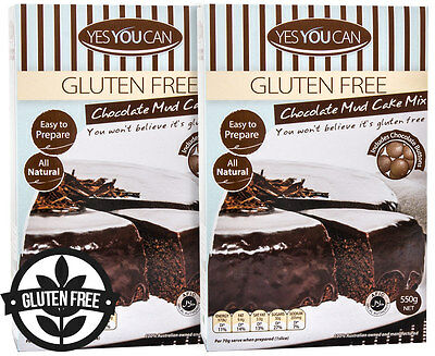 2 x Yes You Can Chocolate Mud Cake Mix Gluten Free 550g