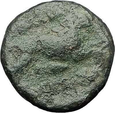 LYSIMACHOS 323BC Authentic Ancient Greek Coin ALEXANDER the GREAT & LION i62273