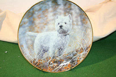 "Danbury mint Westie collection plate with certificate  ""In The Woods"""