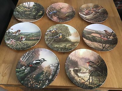 Set Of 8 Limited Edition Royal Doulton Bird Plates