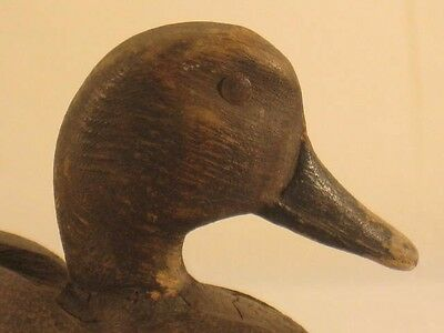Gadwall Duck Decoy Ontario Canada 100% Orig Antique Goose Shorebird