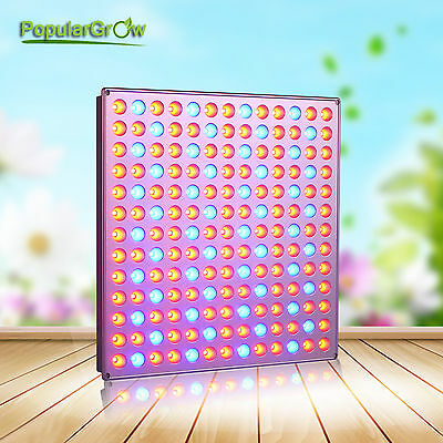PopularGrow 45W LED Grow Light Best Color Ratio for indoor plant Veg Flower