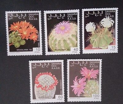 1993- SAHARA OCC R.A.S.D. Set of 5 X Cacti Stamp MUH