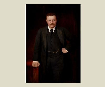 President Theodore Teddy Roosevelt OFFICIAL PORTRAIT PHOTO New York Governor Art