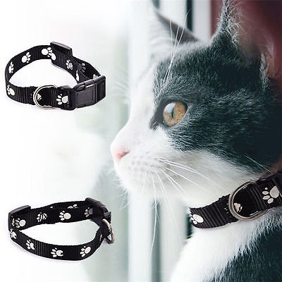 Nylon Strap Anti Flea & Tick Collar for Cat Protection Adjustable Length 40cm