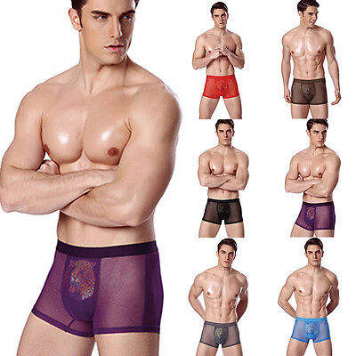 Mens Mesh Boxer Briefs Shorts Bulge Pouch Underpants Trunks Underwear L-3XL