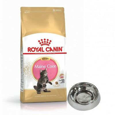 Royal Canin Maine Coon Kitten Saco de 10 Kg