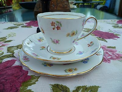 Pretty Vintage Roslyn China Trio Tea Cup Saucer Mixed Flowers Pattern R 592