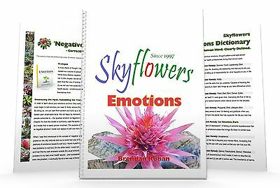 Skyflowers: 250 Rare Emotions, Thought Patterns & Terminology | for Kinesiology