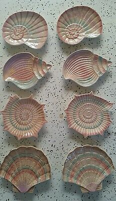 Set Of 8 Fitz And Floyd Omnibus/essential 1996 Sea Shell Plates
