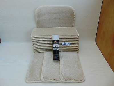 Stair pads / treads 14 off and 1 Big Mats with a FREE can of SPRAY GLUE  2089-4