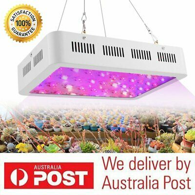 600W LED Grow Light Panel Full Spectrum Indoor Hydroponic Veg Bloom Garden BG