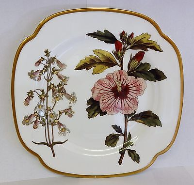 Spode floral cake plate Penstemon & Hibiscus F1810-Y.