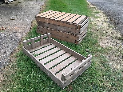 5 Vintage Wooden Rustic Potato Chitting Tray Crate Box apple farm shop