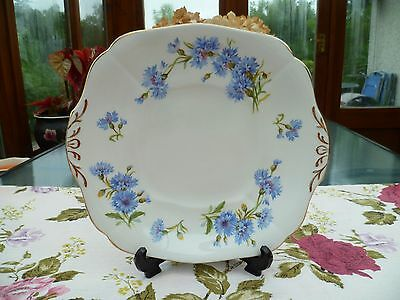 Pretty Vintage Adderley China Cake or Sandwich Plate Blue Cornflower H 487